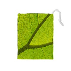 Green Leaf Plant Nature Structure Drawstring Pouches (medium)