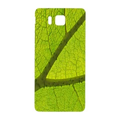 Green Leaf Plant Nature Structure Samsung Galaxy Alpha Hardshell Back Case