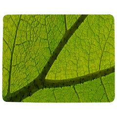Green Leaf Plant Nature Structure Jigsaw Puzzle Photo Stand (rectangular)