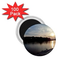 20180115 171420 Hdr 1 75  Magnets (100 Pack)