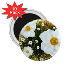 Summer Anemone Sylvestris 2 25  Magnets (10 Pack)