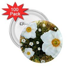 Summer Anemone Sylvestris 2 25  Buttons (100 Pack)
