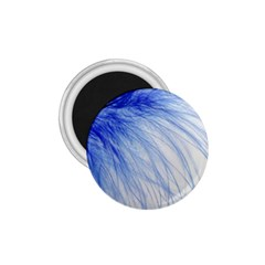 Feather Blue Colored 1 75  Magnets