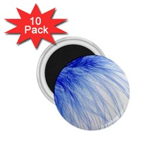 Feather Blue Colored 1 75  Magnets (10 Pack)