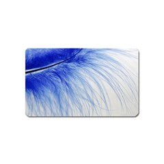Feather Blue Colored Magnet (name Card)