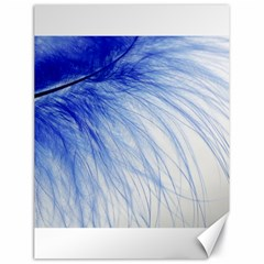 Feather Blue Colored Canvas 18  X 24