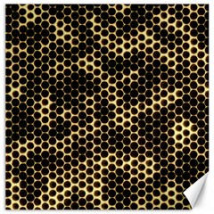 Honeycomb Beehive Nature Canvas 20  X 20