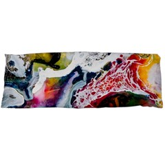 Abstract Art Detail Painting Body Pillow Case Dakimakura (two Sides)
