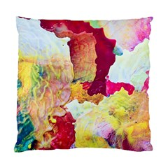 Art Detail Abstract Painting Wax Standard Cushion Case (two Sides)