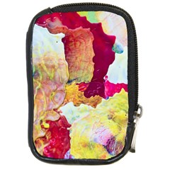 Art Detail Abstract Painting Wax Compact Camera Cases