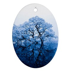Nature Inspiration Trees Blue Oval Ornament (two Sides)