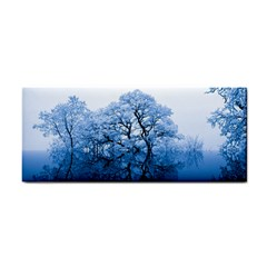 Nature Inspiration Trees Blue Cosmetic Storage Cases