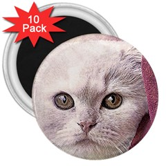 Cat Pet Cute Art Abstract Vintage 3  Magnets (10 Pack)  by Nexatart