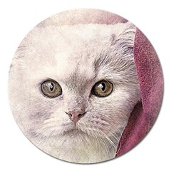 Cat Pet Cute Art Abstract Vintage Magnet 5  (round)