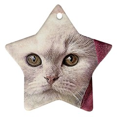 Cat Pet Cute Art Abstract Vintage Star Ornament (two Sides)
