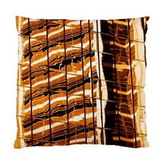 Abstract Architecture Background Standard Cushion Case (two Sides)