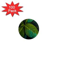 Green Plant Leaf Foliage Nature 1  Mini Magnets (100 Pack)
