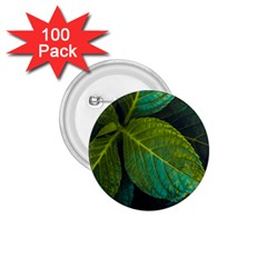 Green Plant Leaf Foliage Nature 1 75  Buttons (100 Pack)