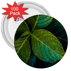 Green Plant Leaf Foliage Nature 3  Buttons (100 Pack)