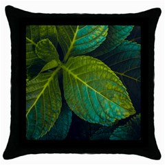 Green Plant Leaf Foliage Nature Throw Pillow Case (black) by Nexatart