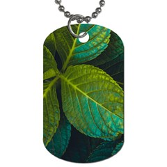 Green Plant Leaf Foliage Nature Dog Tag (one Side)