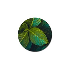 Green Plant Leaf Foliage Nature Golf Ball Marker (4 Pack) by Nexatart