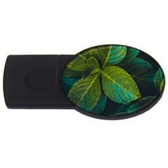 Green Plant Leaf Foliage Nature Usb Flash Drive Oval (4 Gb) by Nexatart