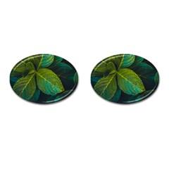 Green Plant Leaf Foliage Nature Cufflinks (oval) by Nexatart