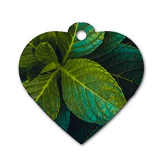 Green Plant Leaf Foliage Nature Dog Tag Heart (two Sides)
