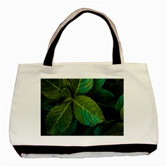 Green Plant Leaf Foliage Nature Basic Tote Bag (two Sides)