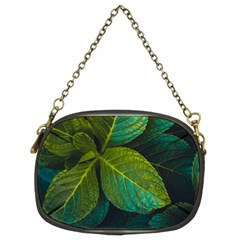 Green Plant Leaf Foliage Nature Chain Purses (two Sides)