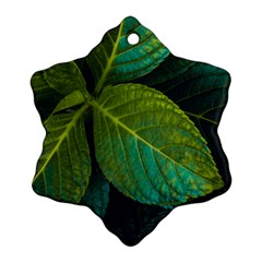 Green Plant Leaf Foliage Nature Snowflake Ornament (two Sides)