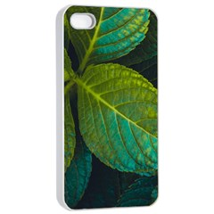 Green Plant Leaf Foliage Nature Apple Iphone 4/4s Seamless Case (white)