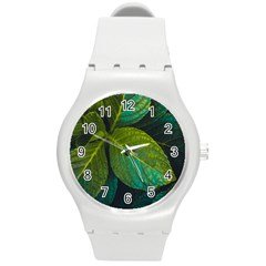 Green Plant Leaf Foliage Nature Round Plastic Sport Watch (m) by Nexatart