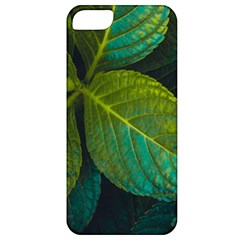 Green Plant Leaf Foliage Nature Apple Iphone 5 Classic Hardshell Case by Nexatart