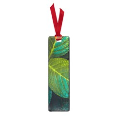 Green Plant Leaf Foliage Nature Small Book Marks