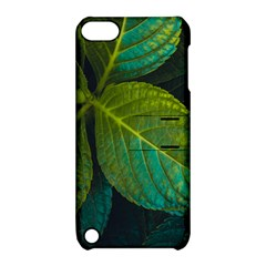 Green Plant Leaf Foliage Nature Apple Ipod Touch 5 Hardshell Case With Stand by Nexatart
