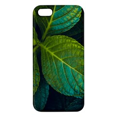 Green Plant Leaf Foliage Nature Apple Iphone 5 Premium Hardshell Case