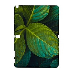 Green Plant Leaf Foliage Nature Galaxy Note 1 by Nexatart