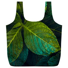 Green Plant Leaf Foliage Nature Full Print Recycle Bags (l)