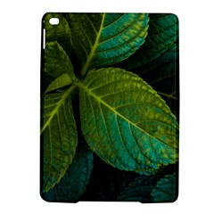 Green Plant Leaf Foliage Nature Ipad Air 2 Hardshell Cases by Nexatart