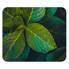 Green Plant Leaf Foliage Nature Double Sided Flano Blanket (small)  by Nexatart