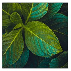 Green Plant Leaf Foliage Nature Large Satin Scarf (square)