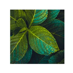 Green Plant Leaf Foliage Nature Small Satin Scarf (square)