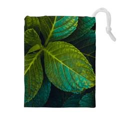 Green Plant Leaf Foliage Nature Drawstring Pouches (extra Large)