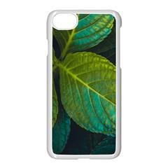 Green Plant Leaf Foliage Nature Apple Iphone 8 Seamless Case (white) by Nexatart