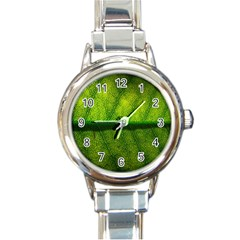 Leaf Nature Green The Leaves Round Italian Charm Watch by Nexatart