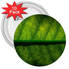 Leaf Nature Green The Leaves 3  Buttons (10 Pack)