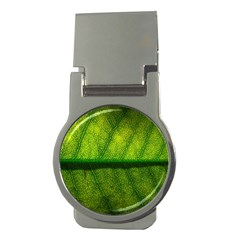 Leaf Nature Green The Leaves Money Clips (round)  by Nexatart