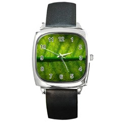 Leaf Nature Green The Leaves Square Metal Watch
